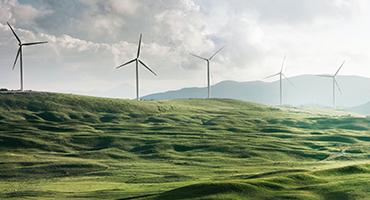 O crescimento das fontes renováveis segue durante o ano